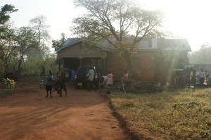 Rented house for the orphans