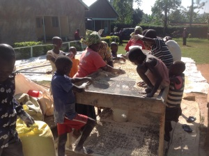 Sifting the maize to get rid of weevils